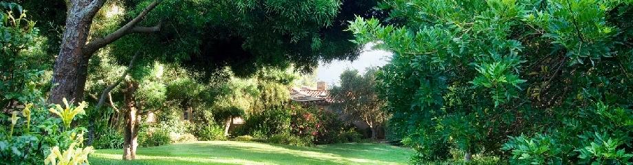 Garten Bodenfrasen